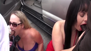 Rough sex in company with wild chick Virgo Peridot